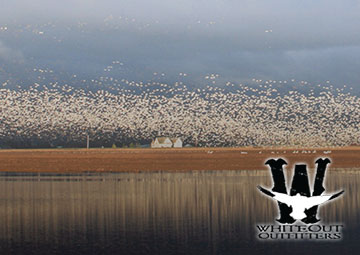 Spring Snow Goose Hunts Lodging